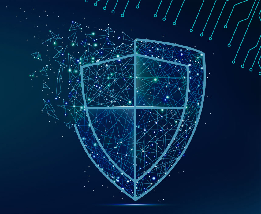 Our sheild approach protects your systems from cyber-attacks